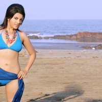 Bigg Boss Shradha Sharma's hot bikini pics