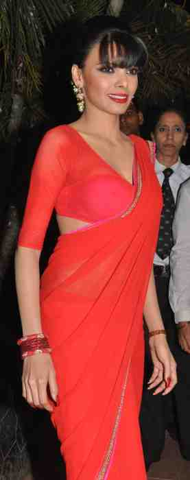 Shrelyn-Chopra-at-Lohri-Di-Raat