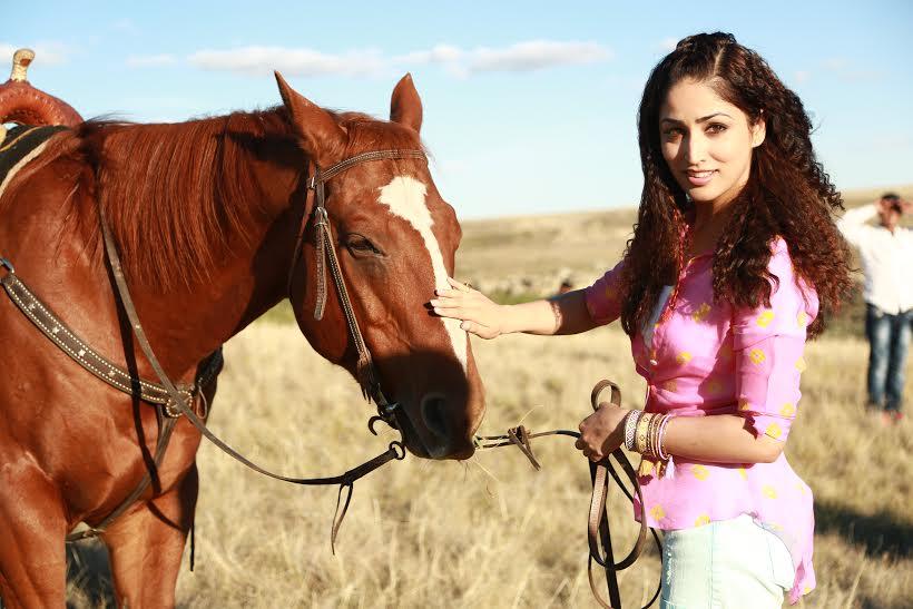 yami horse